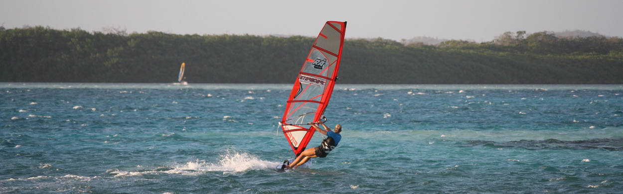 Girl wind surfing